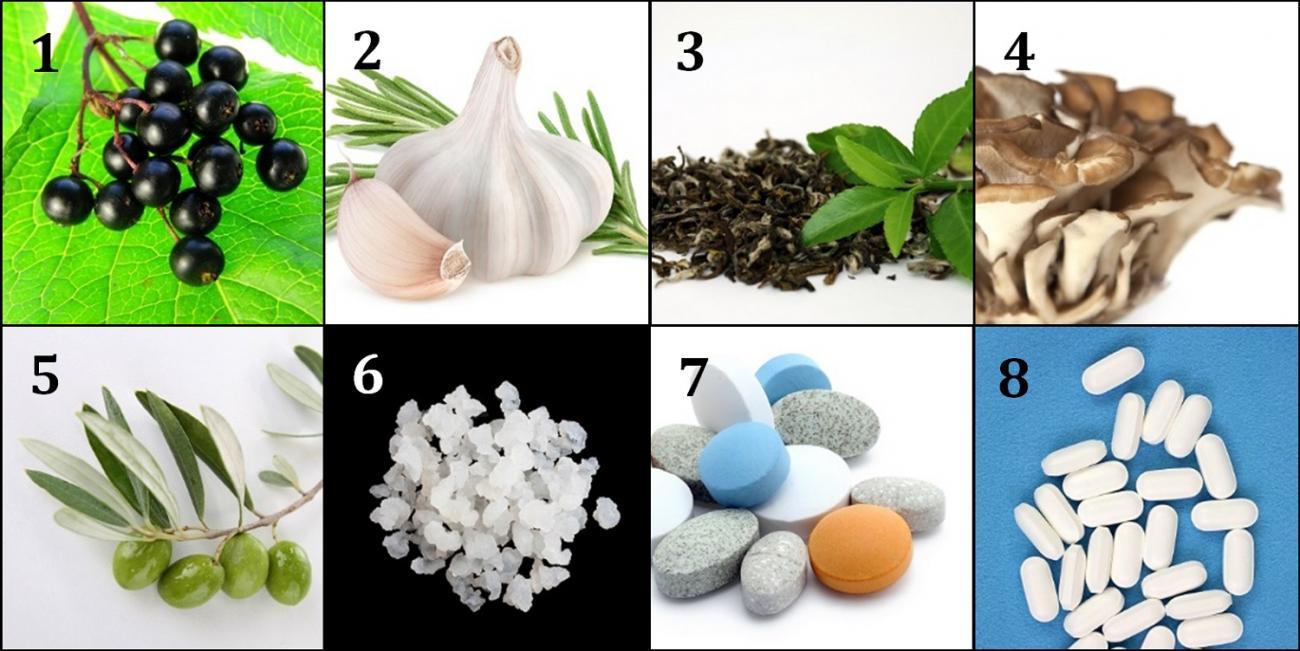 Immunity Ingredients